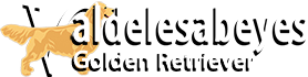 Logo Valdelesabeyes Golden Retriever